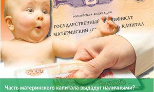 Выплаты приемным родителям за усыновленного ребенка: льготы, пособия, алименты, материнский капитал