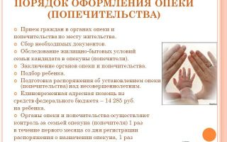 Оформление опеки над ребенком: порядок действий, условия, необходимые документы