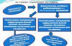 Медико-социальная экспертиза и порядок ее проведения