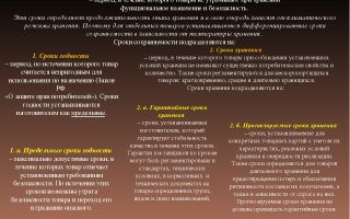 Срок годности товара: что это такое и как он определяется по нормам российского законодательства?