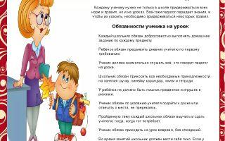 Права и обязанности ребенка в школе и их защита. правила поведения на уроке