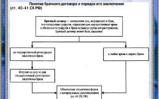 Плюсы и минусы подписания брачного договора