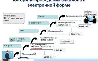 Пошаговая инструкция проведения электронного аукциона по 44-фз: подготовка документации, подача заявок, отмена закупки. инструкция 2019 года