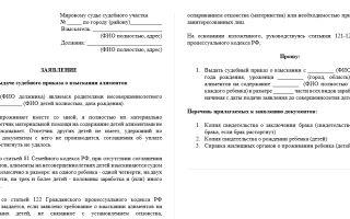 Судебный приказ о взыскании алиментов: суть документа, образец