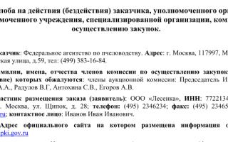 Жалоба в фас на действия заказчика по нормам 44-фз: требования к содержанию и образец претензии, сроки для подачи и рассмотрения