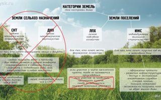 Статус земельного участка: понятие, виды, возможность изменения