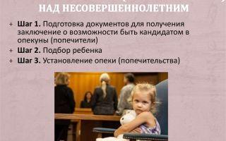Оформление опекунства над несовершеннолетним ребенком при живых родителях: необходимые документы, сроки
