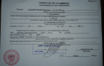 Регистрация новорожденного по месту жительства. стоимость и сроки