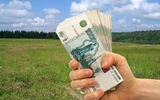 Что такое долгосрочная аренда земли и какой доход с нее можно получить?